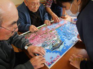 桜のパズル(妙高)