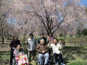 桜を見に散歩へ ~まゆ更科~
